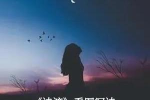 百位诗人看图写诗||一个人的月光(下)